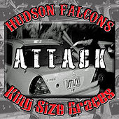 Attack by Hudson Falcons