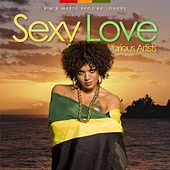 Sexy Love - R'n'b Meets Reggae Lovers by Various Artists