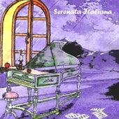Serenata italiana, vol. 14 by Various Artists