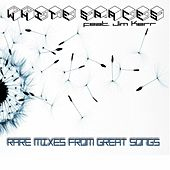 Rare Mixes From Great Songs by Jim Kerr White Spaces