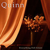 Everything Fell Silent by Quinn