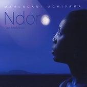 Ndoro dze Madzinza by Mahealani Uchiyama