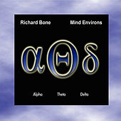 Mind Environs by Richard Bone