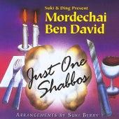 Just One Shabbos by Mordechai Ben David