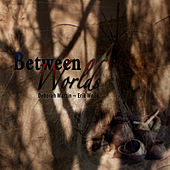 Between Worlds by Deborah Martin