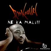 Ne Ka Mali by Amkoullel