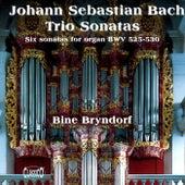 Bach: Trios Sonatas by Bine Katrine Bryndorf