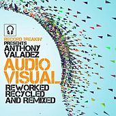 AUDIO / VISUAL: Reworked, Recycled and Remixed by Anthony Valadez