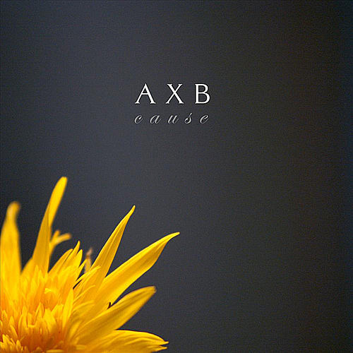 Cause by Axb