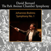 Brahms: Symphony No. 1 by David Bernard