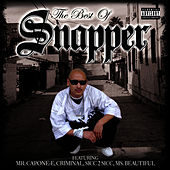The Best of Snapper by Snapper
