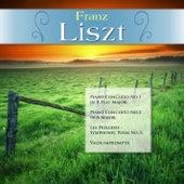 Franz Liszt: Piano Concerto No.1 in E-Flat Major; Piano Concerto No.2 in A Major; Les Préludes - Symphonic Poem No.3; Valse impromptu by Various Artists