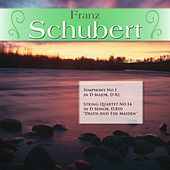 Franz Schubert: Symphony No.1 in D Major, D 82; String Quartet No.14 in D Minor, D.810