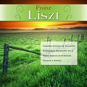 Franz Liszt: Grandes Etudes de Paganini; Hungarian Rhapsody No.2; Piano Sonata in B Minor; Venezia e Napoli by Various Artists