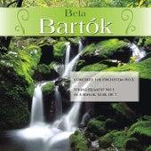 Bela Bartók: Concerto for Orchestra No.2; String Quartet No.1 in A Minor, Sz.40, Op. 7 by Various Artists