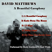 A Beautiful Cacophony by David Matthews