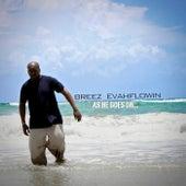 As He Goes On by Breez Evahflowin
