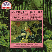 Rejcha: 12 Wind Trios - Beethoven: Wind Sextet & Quintet by Various Artists