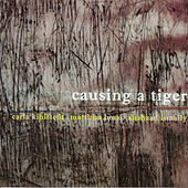 Causing a Tiger by Carla Kihlstedt