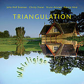 Triangulation - Whirligigs by John Wolf Brennan