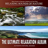 The Ultimate Relaxation Album (Nature Sounds) by Various Artists