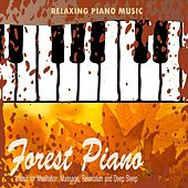 Forest Piano - Classical New Age Piano Music by Classical New Age Piano Music