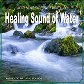 Healing Sound of Water (Nature Sounds) by Various Artists