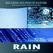 Rain (Relaxing Sounds of Nature) by Nature Sound Series