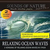 Relaxing Ocean Waves (Nature Sounds) by Relaxing Sounds of Nature