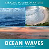 Ocean Waves (Relaxing Sounds of Nature) by Nature Sound Series