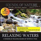 Relaxing Waters (Nature Sounds) by Relaxing Sounds of Nature