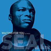Waiting For You by Seal