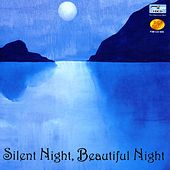 Silent Night, Beautiful Night by Kurt Bestor