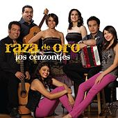 Raza de Oro by Various Artists