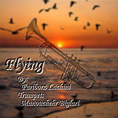 Flying by Fariborz Lachini