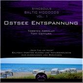 Syncsouls Baltic Moooods - Ostsee-Entspannung: Meeresrauschen, Wellen, Möwen und Klänge zum Ausspa by Torsten Abrolat