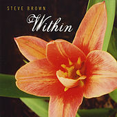 Within by Steve Brown