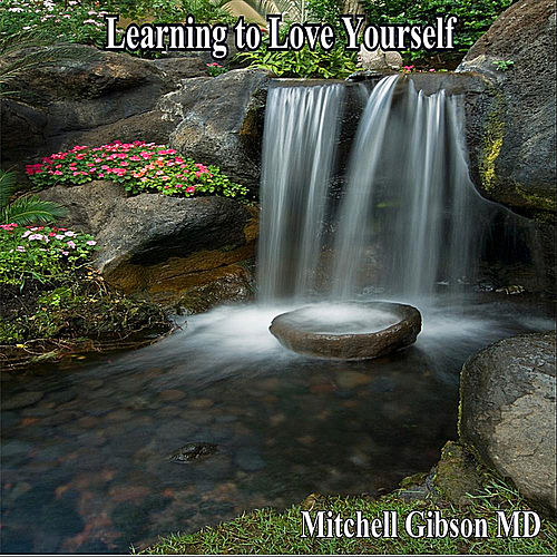 Learning to Love Yourself by Mitchell  Gibson MD