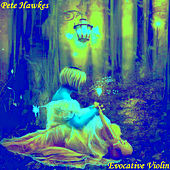 Evocative Violin Vol. 2 by Pete Hawkes