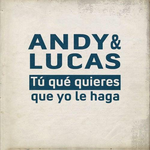 Tu Qué Quieres Que Yo Le Haga by Andy & Lucas