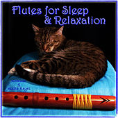 Native American Flute for Sleep & Relaxation with Sounds of Nature (For Massage, New Age, Spa & Deep Sleep Therapy) by Lullaby Tribe