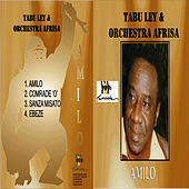 Amilo by Tabu Ley Rochereau