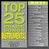 Top 25 Praise Songs Instrumental 2011 by Various Artists