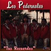 Tus Recuerdos by Los Pedernales