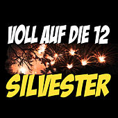 Voll auf die 12 Silvester by Various Artists