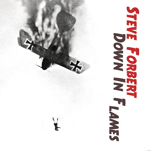 Down In Flames by Steve Forbert