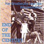 End Of The Century by Joe Grushecky