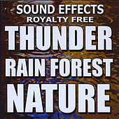Thunder, Rain Forest, Nature by Sound Effects Royalty Free
