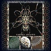 Cortical Tectonics by Canvas Solaris