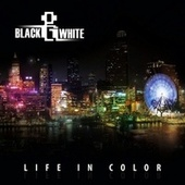 Life In Color by Various Artists
